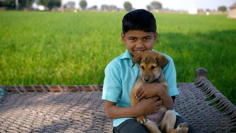 An Indian village scene with a boy sitting on a cot holding a puppy in his hand
