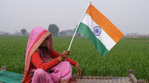 Indian elderly lady hosting the tricolor flag on Independence/Republic day in India