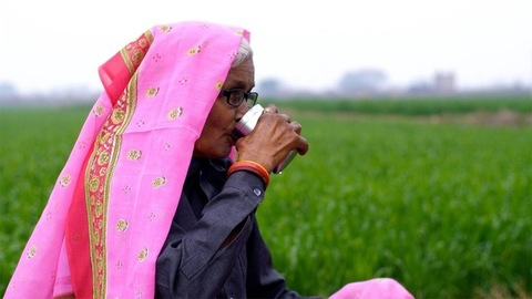 An elderly lady of a village eating medicine with a glass of water in an open field
