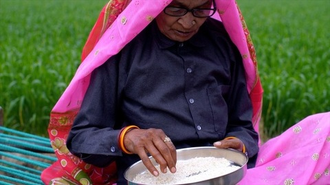 Medium shot of an Indian woman from a village removing stones from uncooked rice