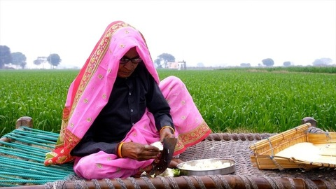 Mid shot of an old woman cutting fresh vegetables using a traditional Indian knife