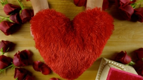 Top view shot of woman hands showing heart-shaped soft toy on Valentine's day