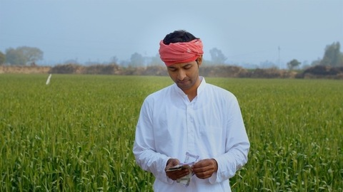 Indian farmer counting his last month's hard-earned income - financial concept