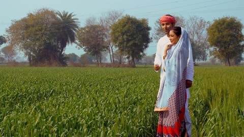 Beautiful Indian village couple happily talking and looking at their wheat crops