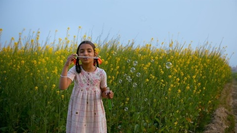 Cute Indian kid/child happily blowing soap bubbles in a mustard/Sarso field