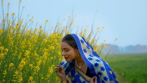 Village female farmer touching and smelling her fully grown mustard flowers