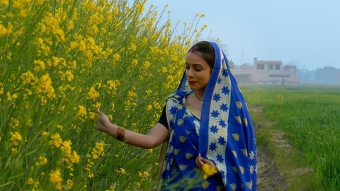 Portrait of a married village woman enjoying in her mustard (Sarso) field