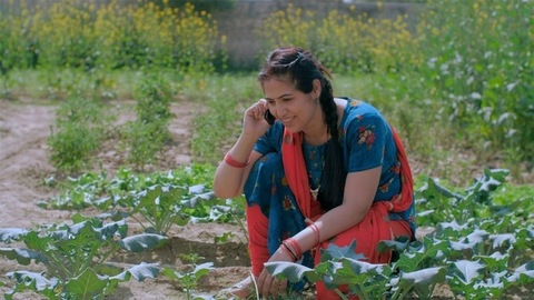 Agricultural laborer making a phone call while working in a cultivation farm
