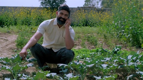 A bearded farmer sitting inside his green farm while talking on mobile