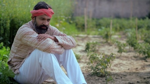 Disappointed Indian farmer sitting with frustration in his agricultural field