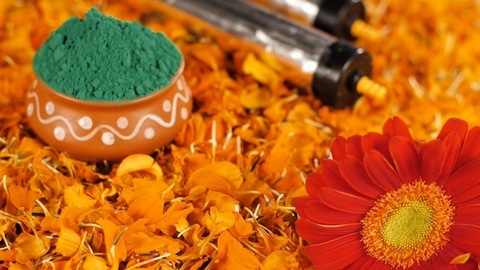 Organic Gulal with bright flower petals decorated on the occasion of Holi