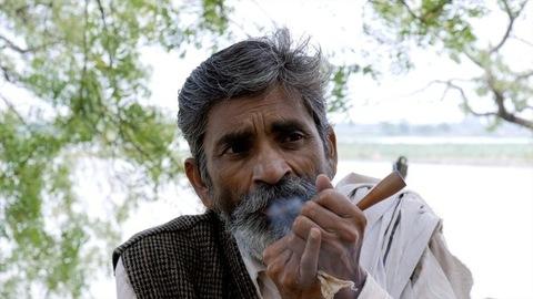 Elderly bearded man enjoying smoking a weed