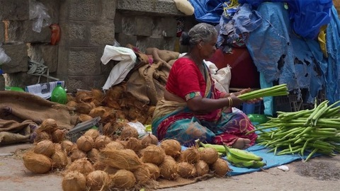 Chennai, Tamil Nadu - India, Portrait of an old aged lady selling vegetables like drumsticks and coconuts