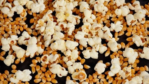 Stop motion shot of freshly made popcorns popping in a non-stick frying pan