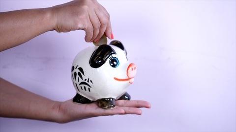 Piggybank for saving. Pig shaped piggy bank. Finance, Saving, Money
