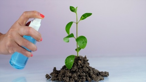 Watering plant with a spray bottle - Go Green, Save environment, Plant trees