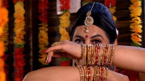 Beautiful Indian housewife / women posing in her traditional attire - sari