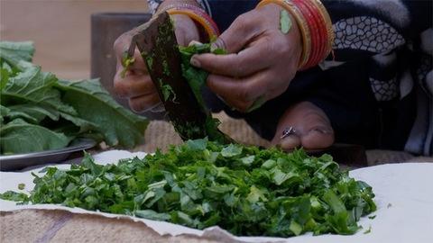 Closeup shot of a woman cutting mustard using a traditional vegetable cutter / paniki - Indian Village Kitchen
