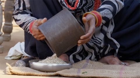 Indian woman transferring the powdered bajra / millet into the plate