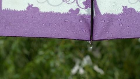 Drops of rainwater hitting the purple umbrella