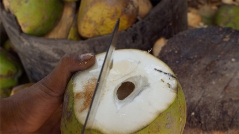 Fruit seller peeling and shelling a fresh green coconut using a chopping knife