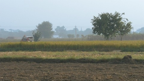 Rural landscape view of a beautiful agricultural land during the daytime in India