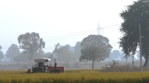 Indian farmer plowing the field with his agricultural tractor in Delhi/NCR, India
