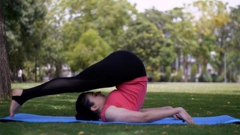 Healthy beautiful lady practicing Halasana (plough pose) on a yoga mat - sportswear