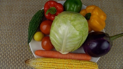 Top view shot of different organic vegetables for eating healthy and dieting