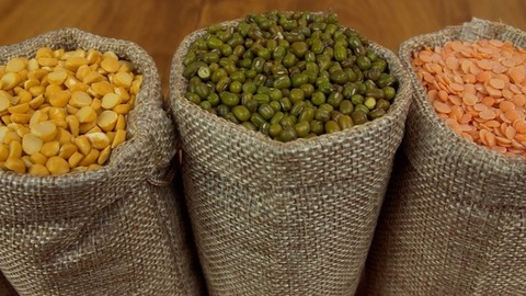Rich source of protein - Different Dals / lentils kept in jute sacks in the kitchen
